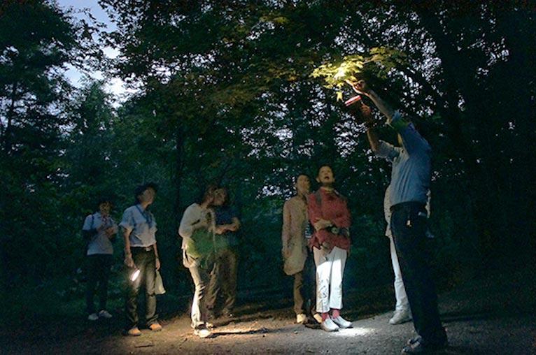 2019年7月27日~8月4日 『ナイトハイク 赤城自然園』 ホタルの時期に合わせて10日間開催