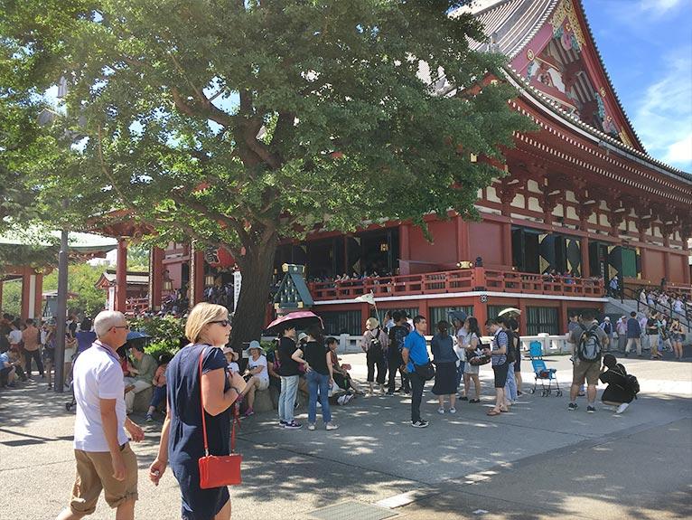 2018年6月30日 JGNスペシャルツアー 辻 幸治さんと行く浅草「お富士さん植木市」 好みの植物・珍しい植物をゲットするチャンス! 浅草寺。ご覧の通り、外国人がほとんど