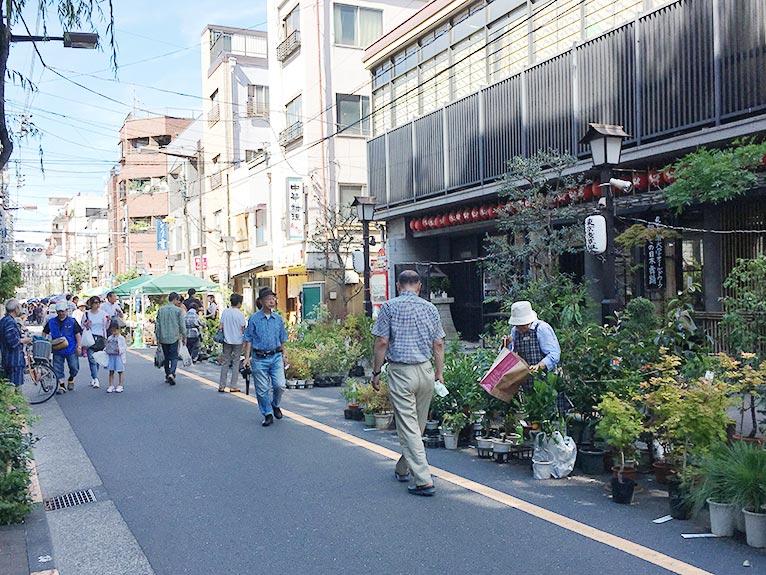 2018年6月30日 JGNスペシャルツアー 辻 幸治さんと行く浅草「お富士さん植木市」 好みの植物・珍しい植物をゲットするチャンス! 通りはこんな風でした。