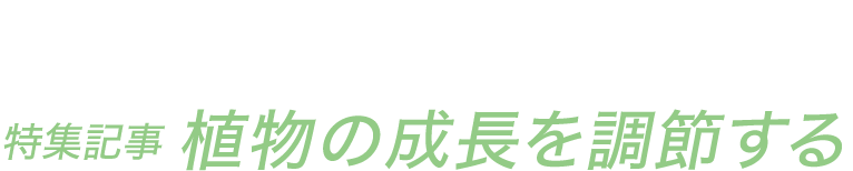 JGN NEWS LETTER 2018年初夏号 Vol.8(その2) 特集記事 植物の成長を調節する 日本大学教授・JGN創立メンバー 腰岡 政二氏