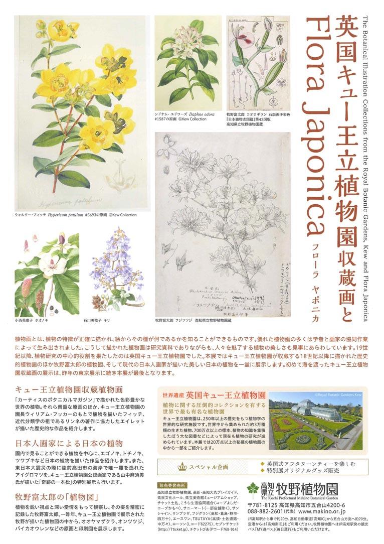 2018年6月2日~8月5日 「英国キュー王立植物園収蔵画とFlora Japonica」 高知県立牧野植物園