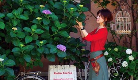 神田むつみ特別セミナー「秋色アジサイに魅せられて」ROSE & BERRY Tawada ローザンベリー多和田