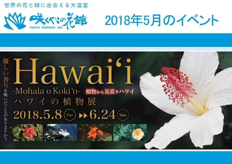 咲くやこの花館 2018年5月のイベント