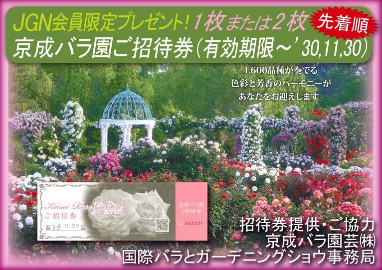2018年6月11日~ JGN会員限定 先着順にプレゼント! 京成バラ園 招待券1枚または2枚プレゼント