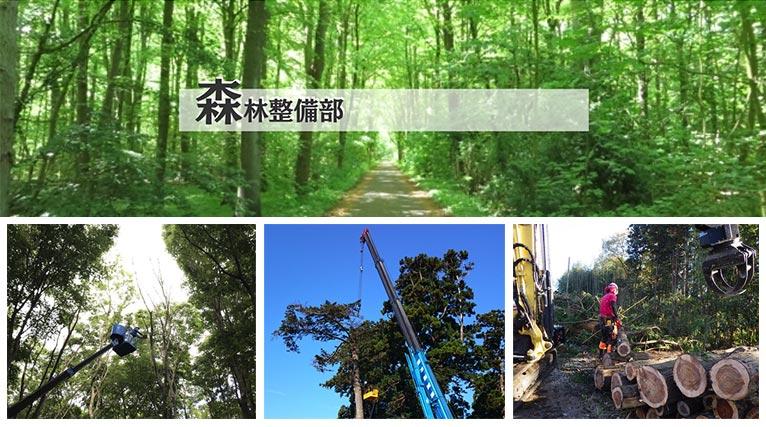 株式会社 砂押園芸 紹介ページ 森林整備部