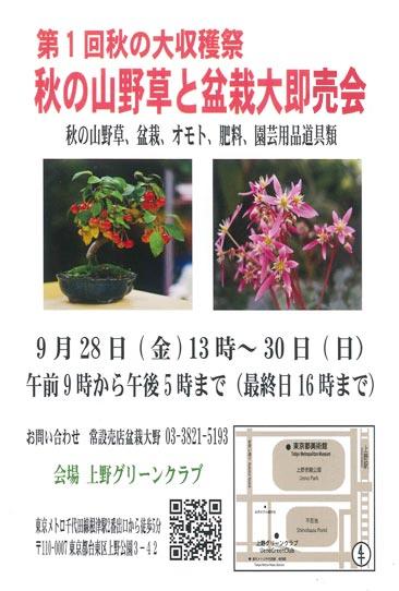2018年9月28~30日<第1回秋の大収穫祭秋の山野草と盆栽大即売会上野グリーンクラブ(東京)