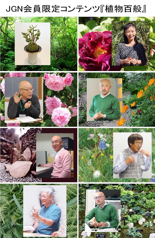 ウェブ限定コンテンツ「植物百般」