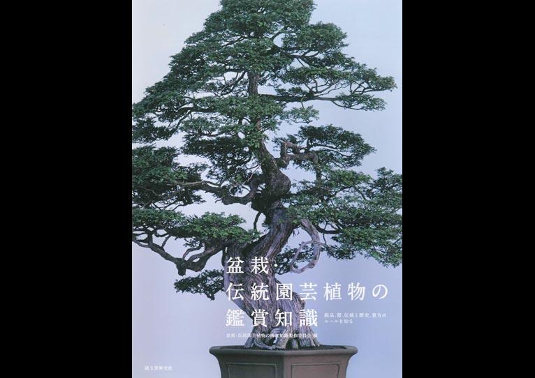 盆栽・伝統園芸植物の鑑賞知識銘品,器,伝統と歴史,見方のルールを知る
