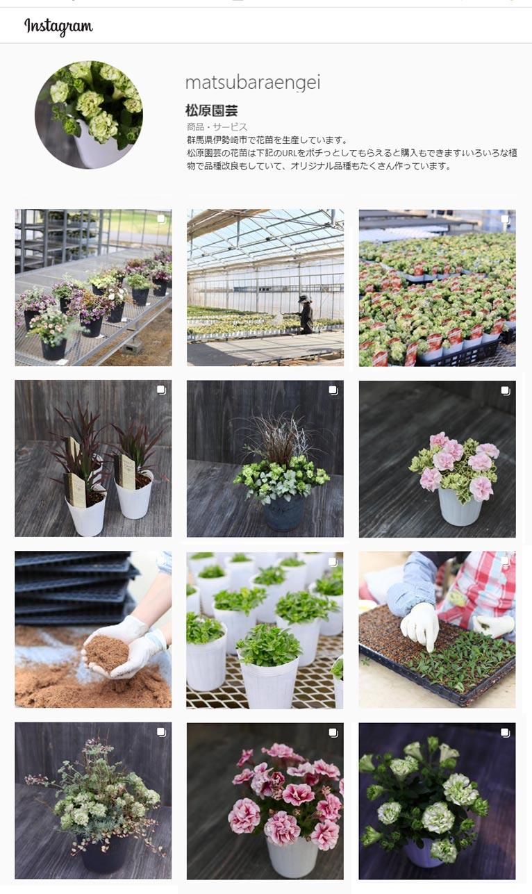 松原園芸 Instagram