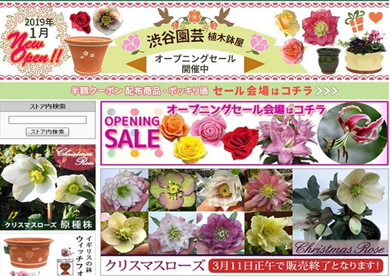 【OPEN SALE 開催中!】Yahoo!ショッピングよりWEBshopニューオープンいたしました!!!株式会社 渋谷園芸