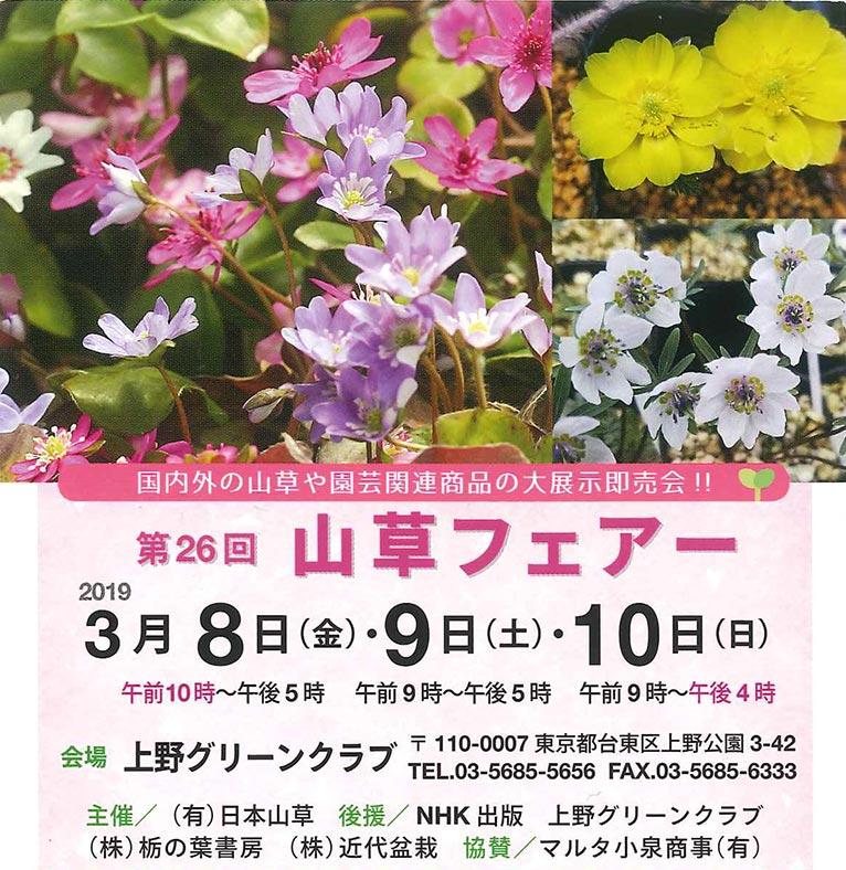 2019年3月8~10日 第26回 山草フェアー 上野グリーンクラブ(東京) JGN創立メンバーの伴さんと川原田さんが出展!