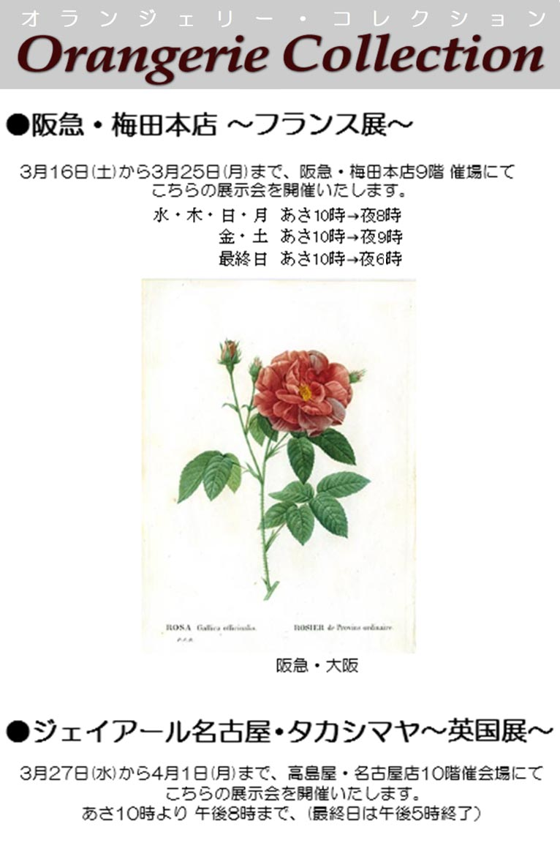 2019年3月16~25日阪急・梅田本店~フランス展~ 3月27日~4月1日ジェイアール名古屋・タカシマヤ~英国展~ 植物画を展示販売します! オランジェリー・コレクション