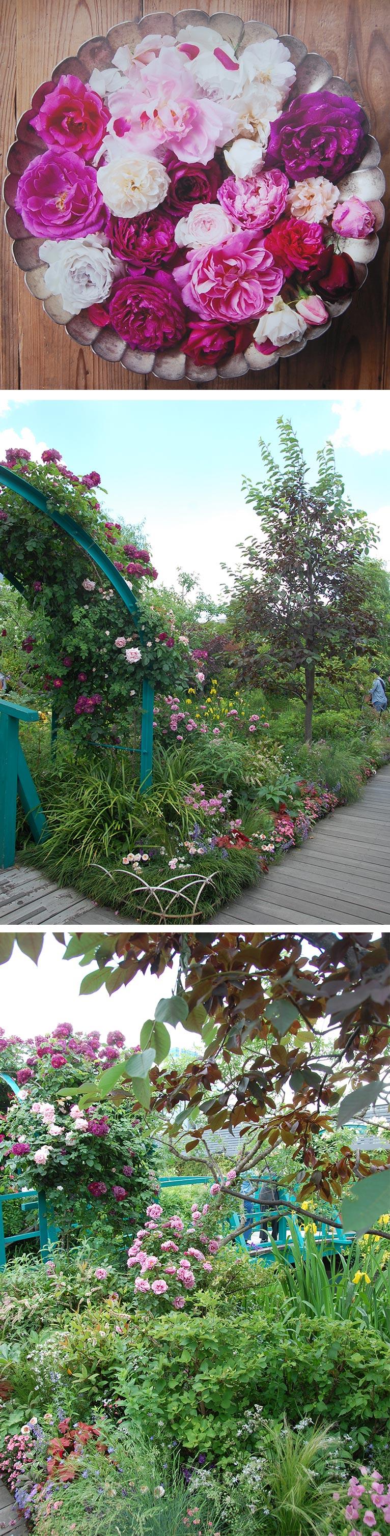 2019年5月14~20日 Life with Roses Exhibition 2019『バラぐらし』素敵なバラに包まれて西武池袋本店