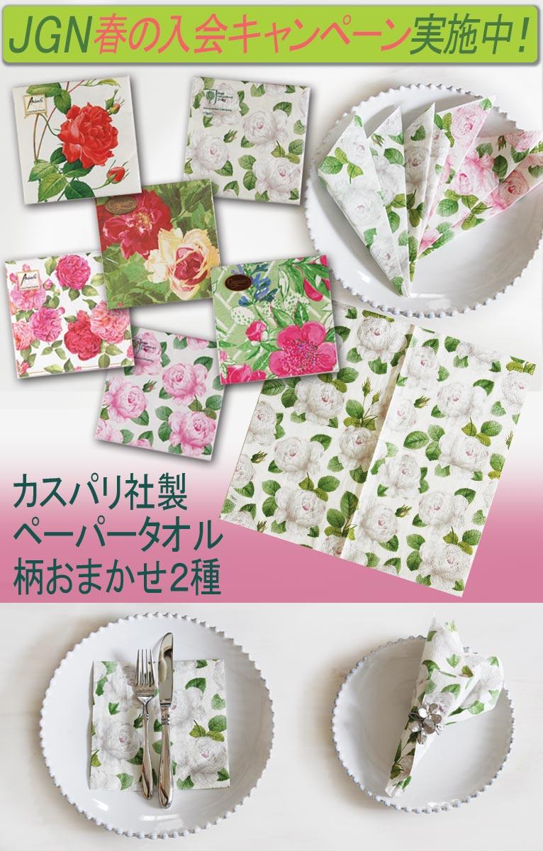 2019年4月3日~JGN春の入会キャンペーン中です!!カスパリ社ペーパータオル2種(柄おまかせ)