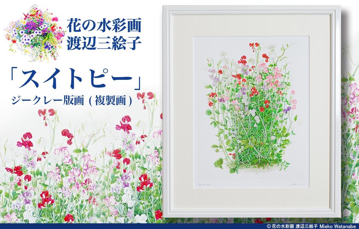 渡辺三絵子 花の水彩画ジークレー版画(複製画)「スイトピー」