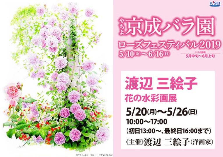 2019年5月20~26日 渡辺三絵子 花の水彩画展 ローズフェスティバル 京成バラ園