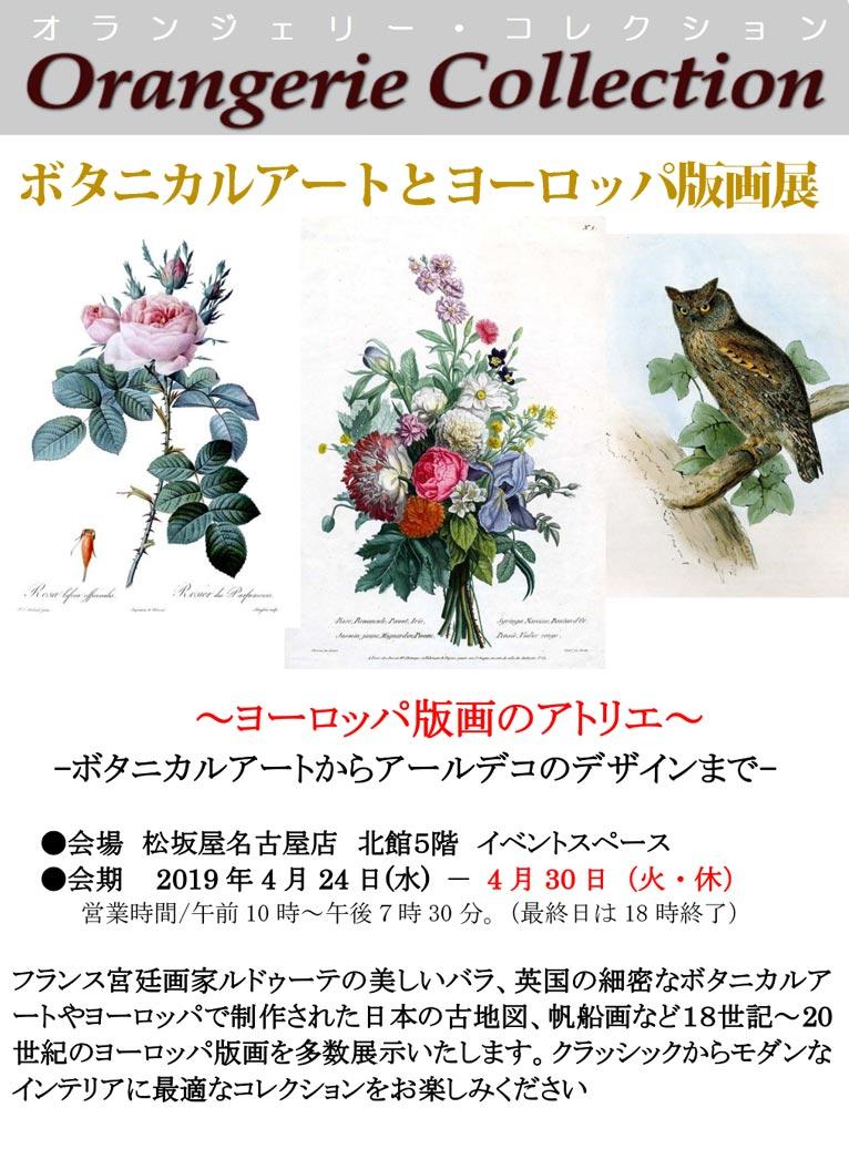 2019年4月24~30日 松坂屋名古屋店ヨーロッパ版画のアトリエ~ -ボタニカルアートからアールデコのデザインまで- 植物画を展示販売します! オランジェリー・コレクション