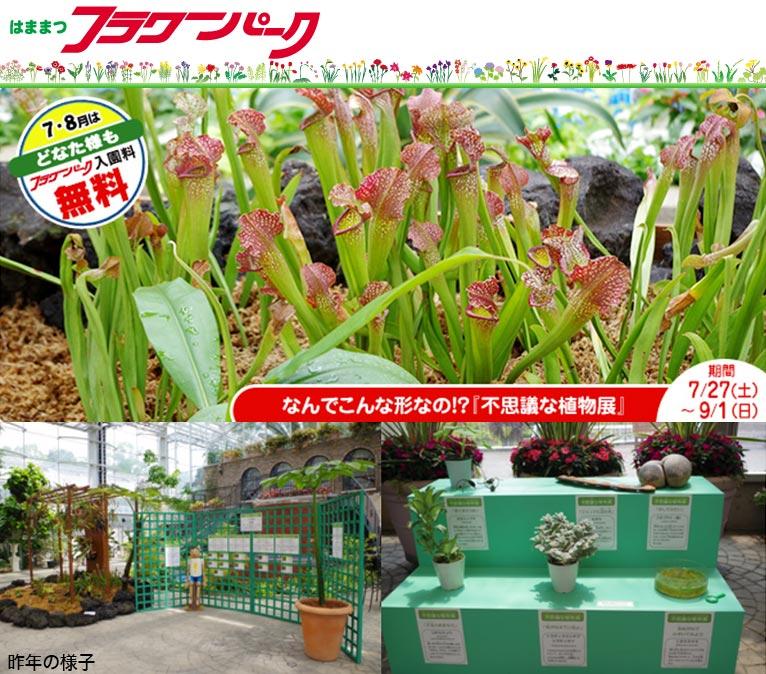 2019年7月27日~9月1日『不思議な植物展』inはままつフラワーパーク