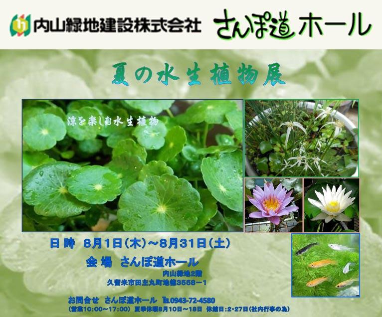 2019年8月1~31日夏の水生植物展さんぽ道ホール内山緑地建設株式会社