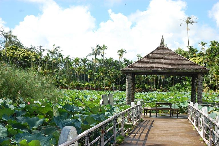 JGN事務局スタッフ 沖縄 東南植物楽園を訪れました!