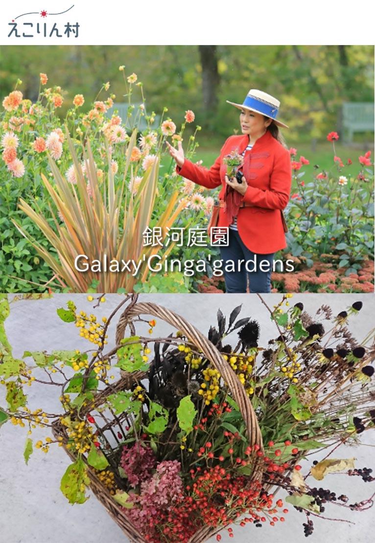 2019年11月3日銀河庭園 吉谷桂子先生と楽しむリース製作「庭の恵みで土台からガーデンリースを作りましょう!」えこりん村