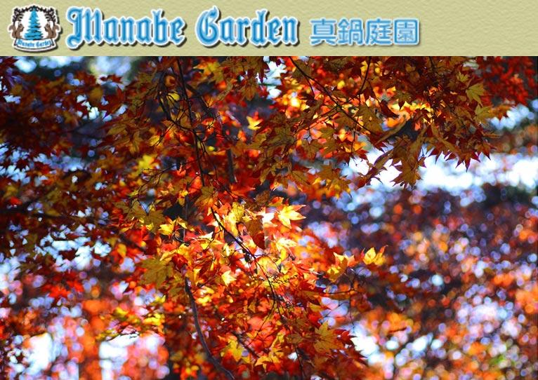 2019年10月12~14日真鍋庭園 秋の感謝祭