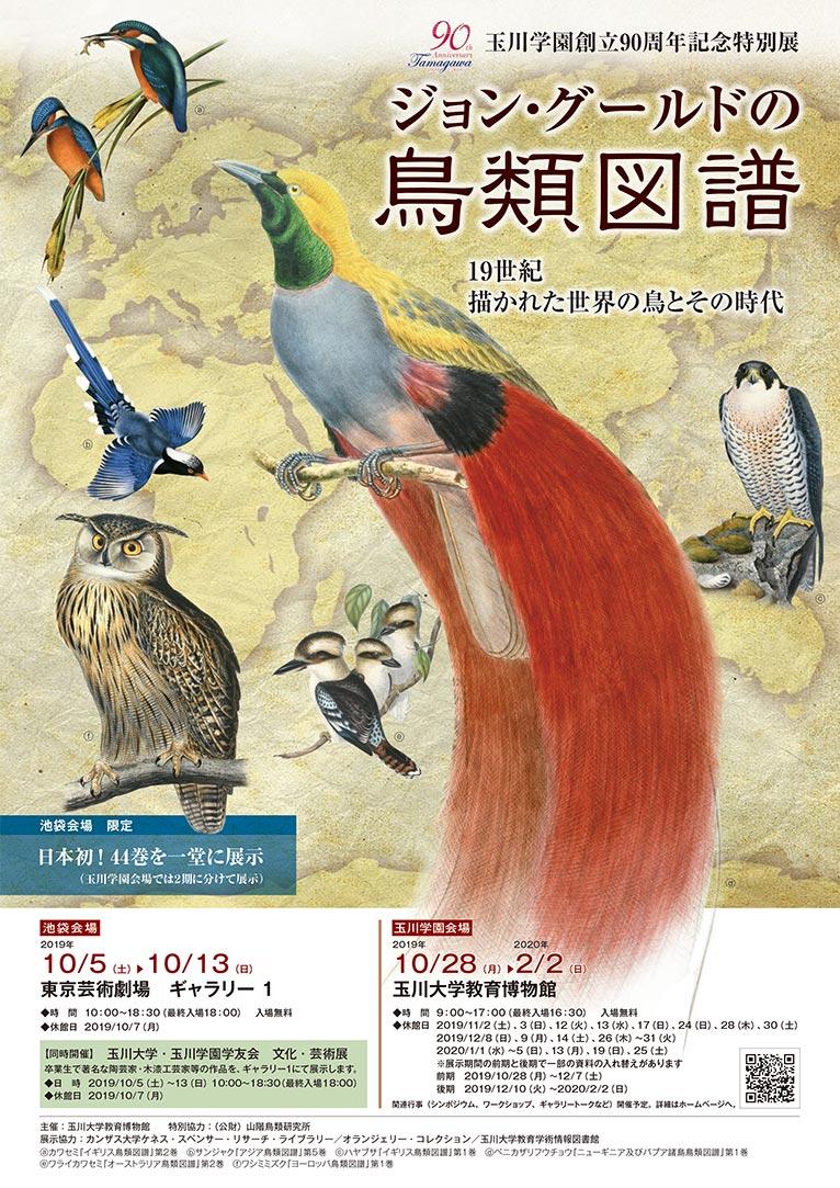 2019年10月5~13日東京芸術劇場『ジョン・グールドの鳥類図譜展』