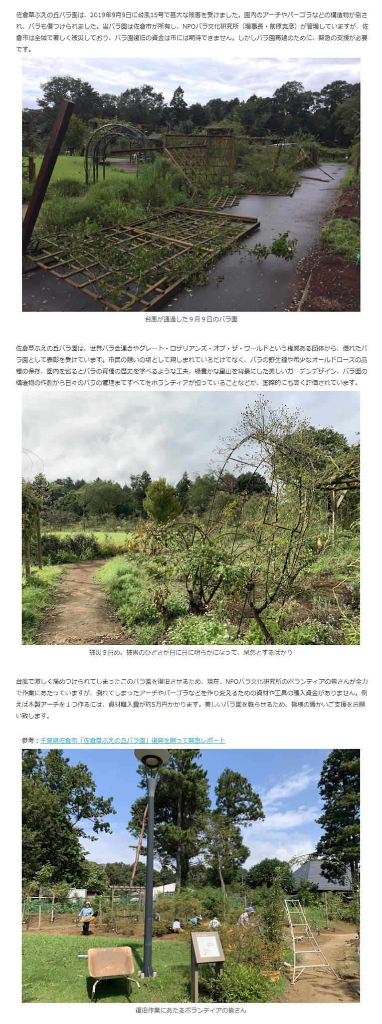 2019年10月4日~11月24日佐倉草ぶえの丘バラ園を台風15号の被害から立ち直らせよう!
