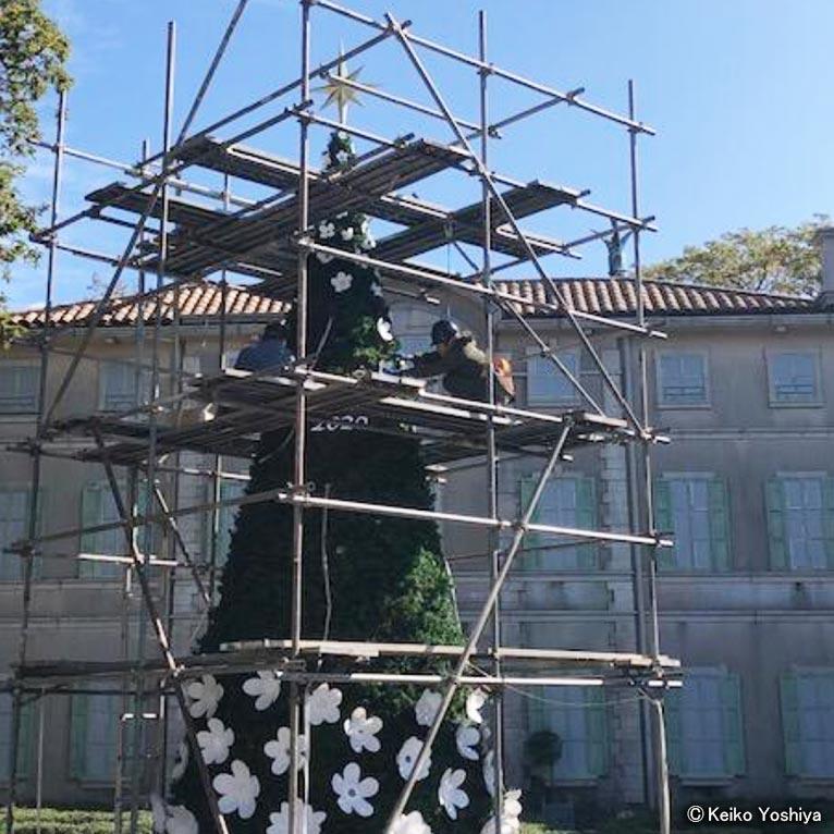星の王子さまミュージアム開園20周年記念『花のグランツリー』吉谷桂子