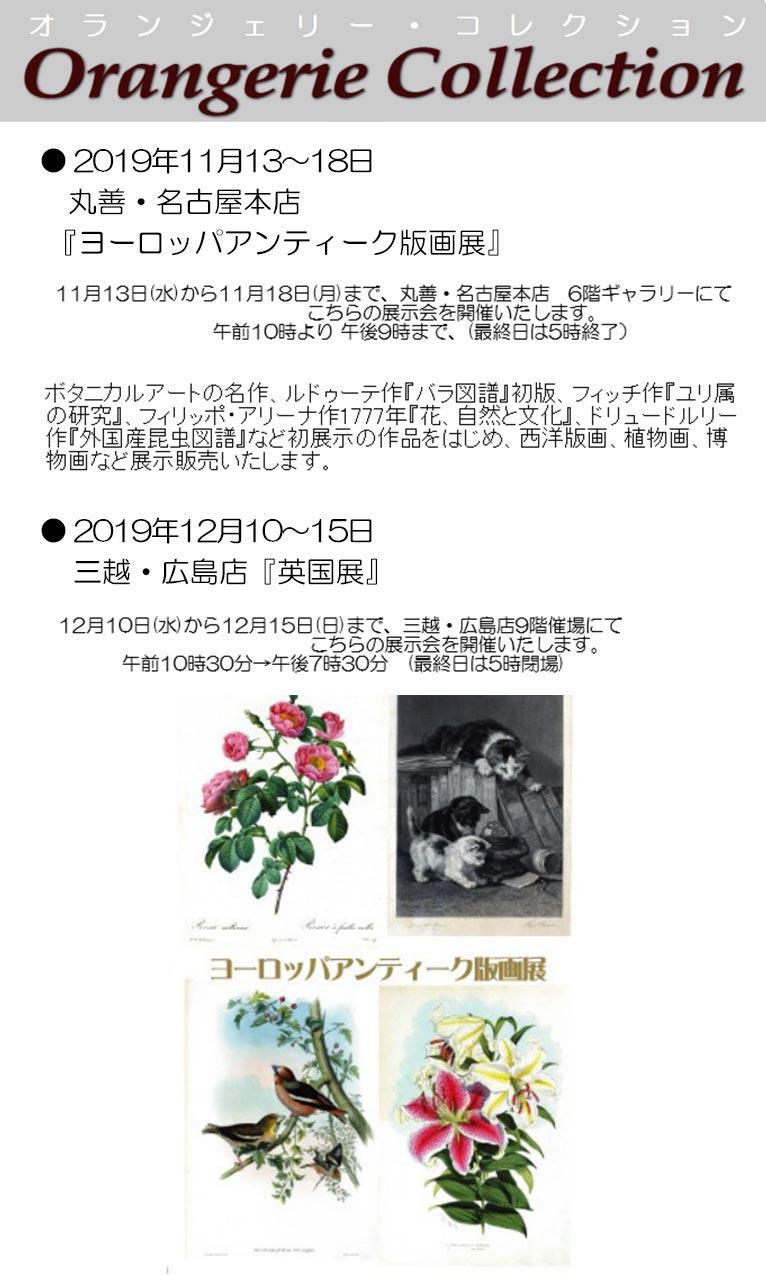 2019年11月13~18日丸善・名古屋本店『ヨーロッパアンティーク版画展』12月10~15日三越・広島店『英国展』植物画を展示販売します! オランジェリー・コレクション