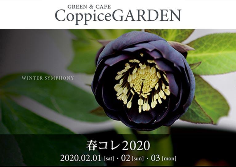 2020年2月1~3日『春コレ2020』コピスガーデン