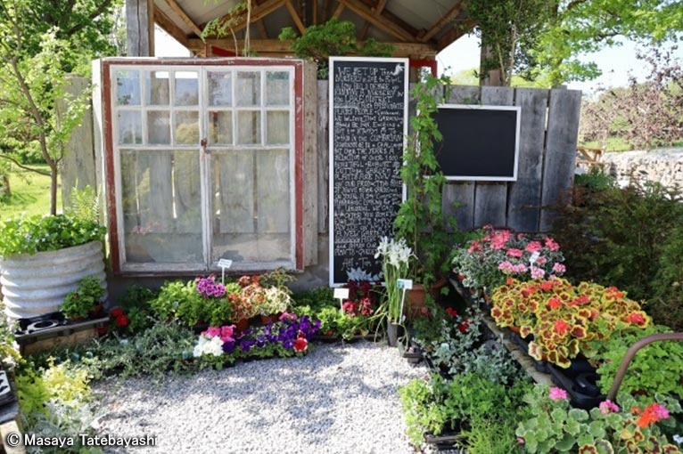 2020年6月16日~22日キューディプロマ修了舘林正也先生と行く英国ガーデンツアー英国王立園芸協会(RHS)の最新ガーデン&憧れの有名デザイナーの名庭をめぐる旅(7日間)舘林先生のご友人が経営されるナーセリー、Abi &Tom's Garden Plants
