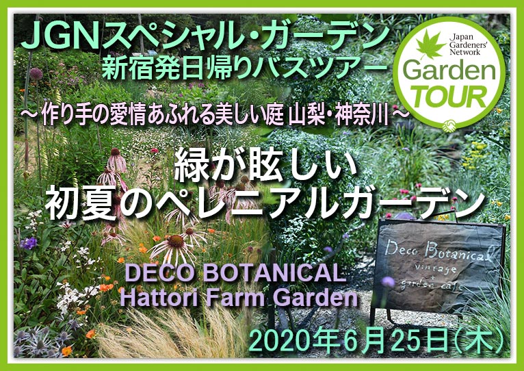 2020年6月25日 JGNスペシャル・ガーデン日帰りバスツアー(新宿発) ~作り手の愛情あふれる美しい庭 山梨・神奈川~「緑が眩しい初夏のペレニアルガーデン」DECO BOTANICAL & Hattori Farm Gardenを貸切! JGN・池袋コミュニティ・カレッジ共催