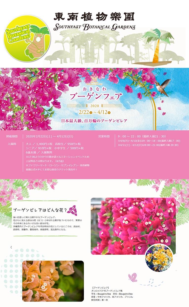 2020年2月22日~4月12日おきなわブーゲンフェア~日本最大級、百万輪のブーゲンビレア~東南植物楽園