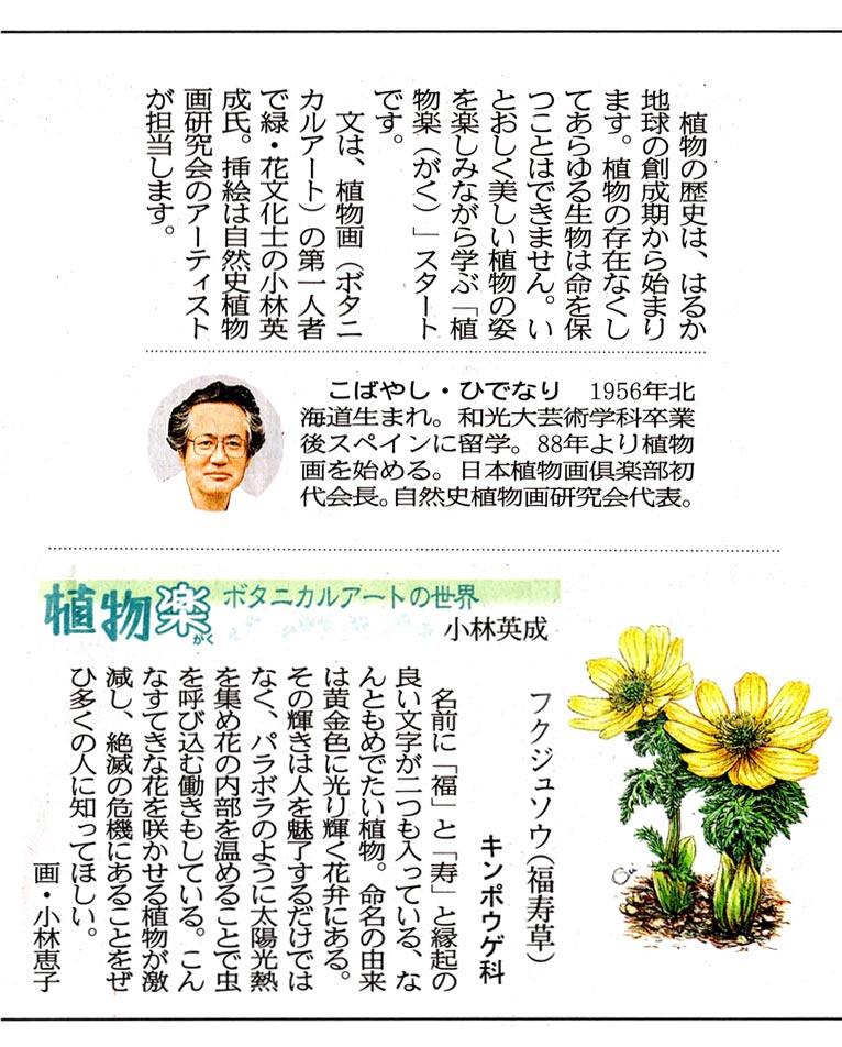 2019年4月~(宮城県)・下野新聞(栃木県)・愛媛新聞(愛媛県)に植物画つきの植物コラムを連載しています自然史植物画研究会 代表・植物画家・JGNメンバー 小林英成