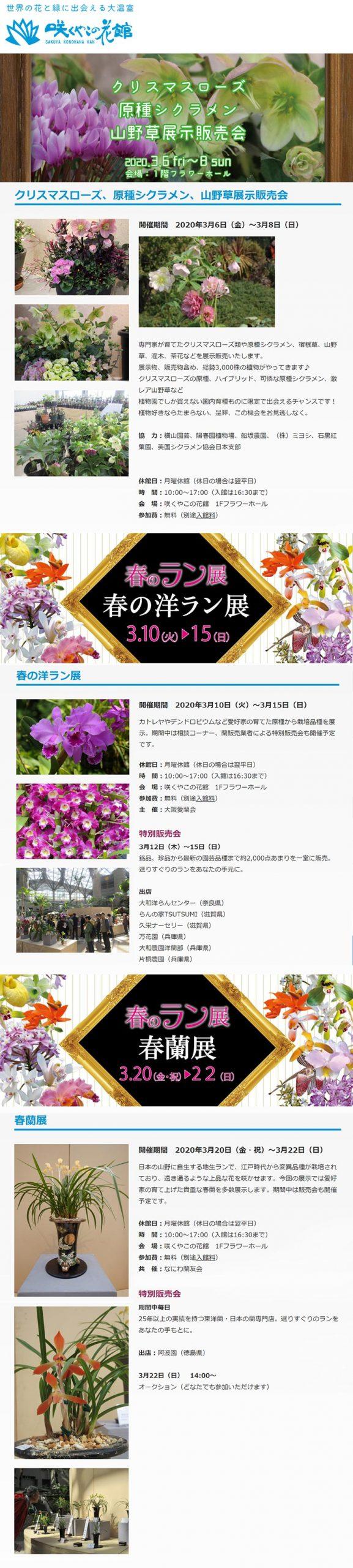 2020年3月6~8日クリスマスローズ、原種シクラメン、山野草展示販売会 3月10~15日春の洋ラン展 3月20~22日春蘭展 咲くやこの花館