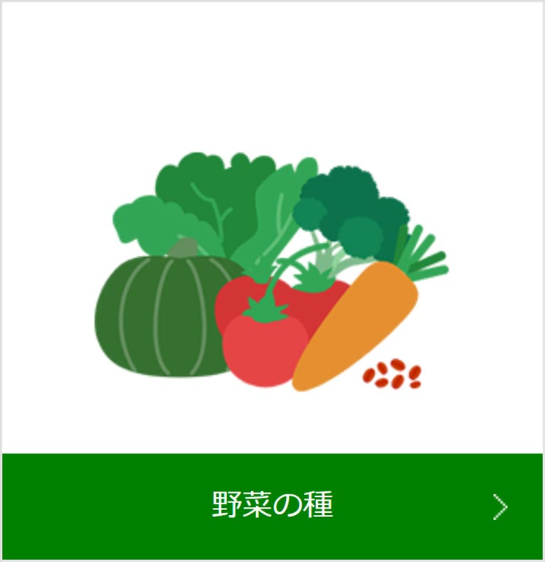 朝日アグリア株式会社 紹介ページ 野菜の種