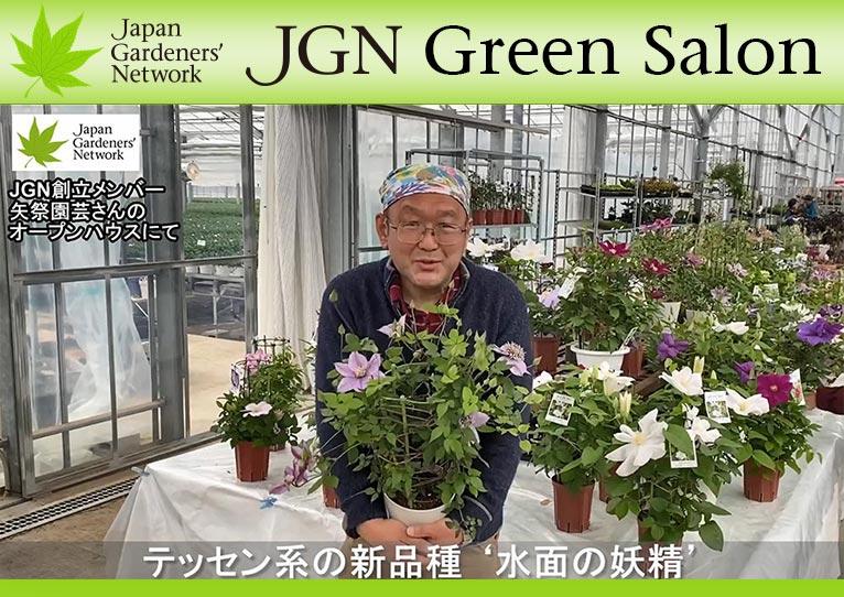 【JGN グリーンサロン】JGN創立メンバー 金子明人さん お気に入りのクレマチス