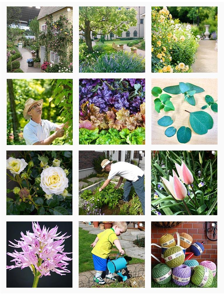インスタグラムを始めました! マークス ガーデン アート