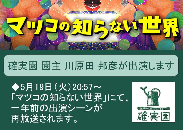 2020年5月19日20:57~の「マツコの知らない世界」にて、一年前の確実園 園主 川原田 邦彦氏の出演シーンが再放送されます!