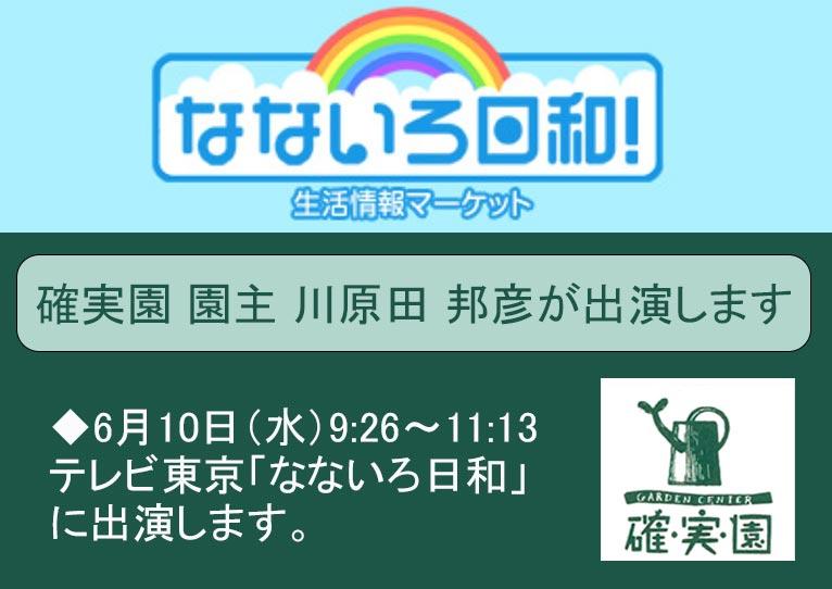 2020年6月10日9:26~11:13 テレビ東京「なないろ日和」に確実園 園主 川原田 邦彦さんが出演します!
