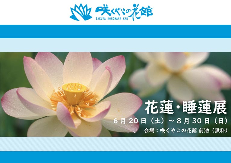 【館外展示のため無料・約240品種】2020年6月20日~8月30日 花蓮・睡蓮展 ~関西最大級を誇る水生植物たちの姿~ 咲くやこの花館