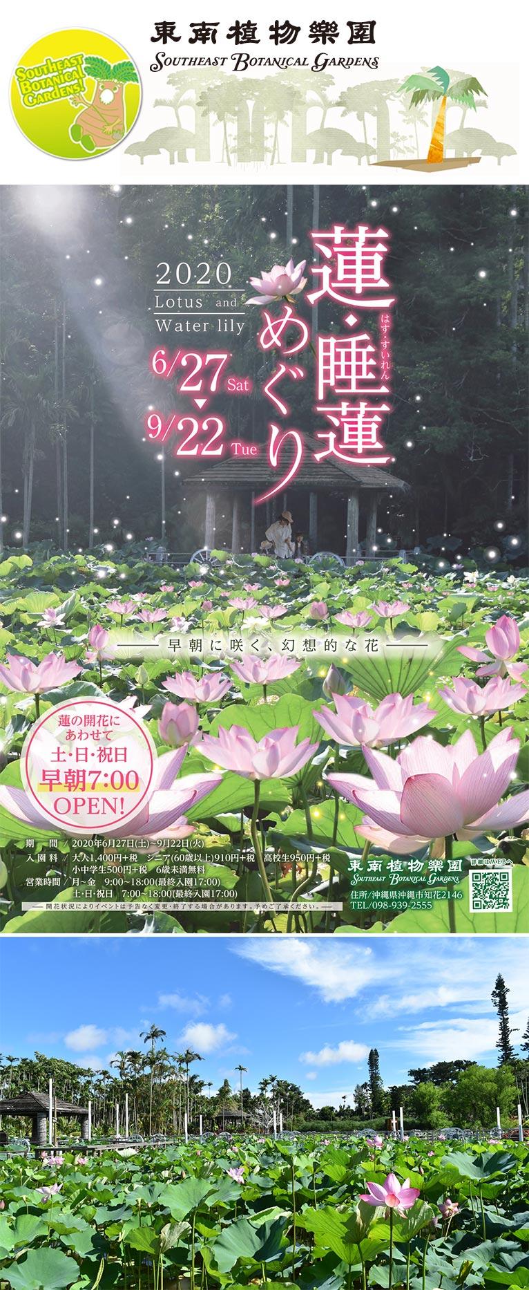 2020年6月27日~9月22日 蓮・睡蓮めぐり 東南植物楽園