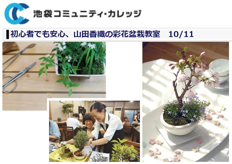 2020年10月11日【まずはお試し一日体験レッスン】 初心者でも安心、山田香織の彩花盆栽教室 池袋コミュニティ・カレッジ