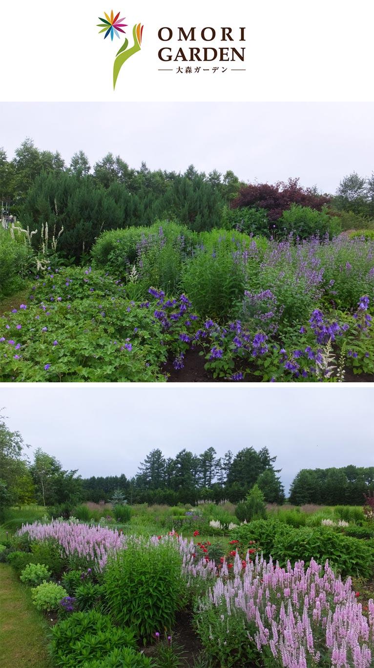 十勝・日高山脈のふもとで千品種を超える宿根草を育成する大森ガーデン