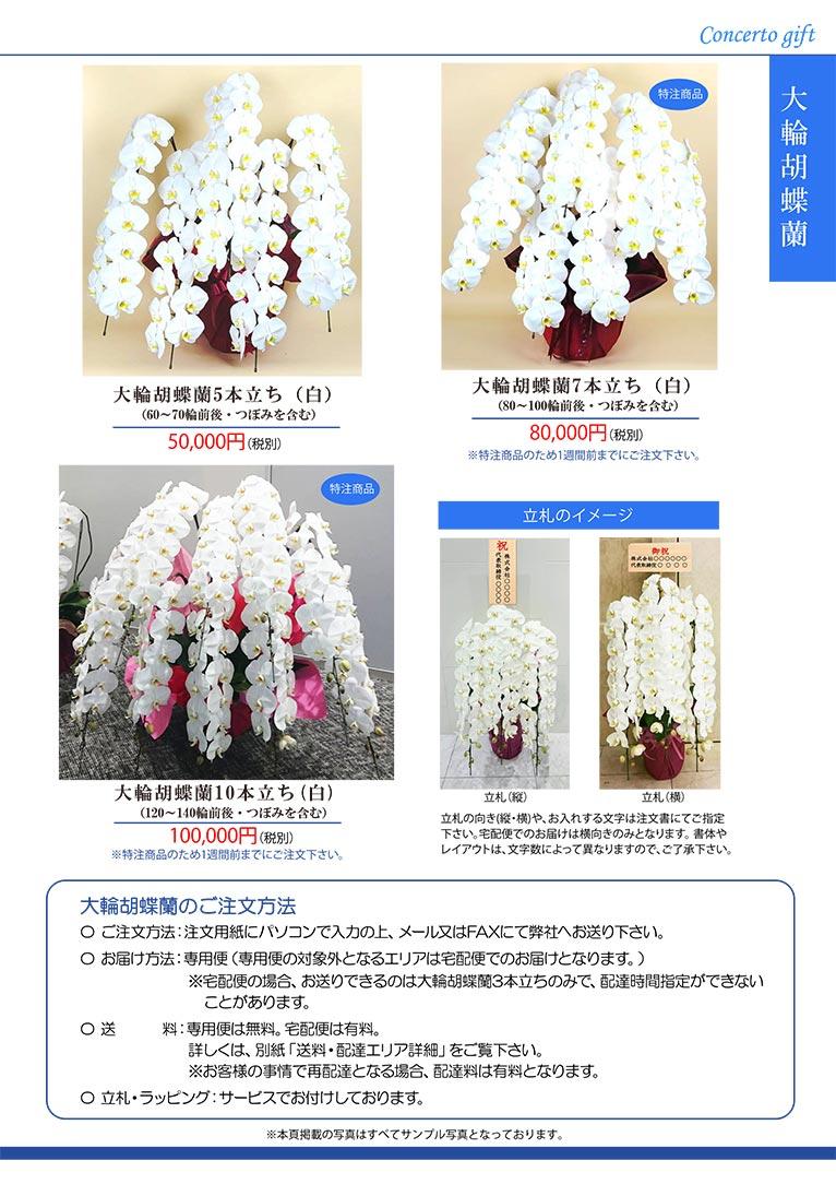 【新カタログ】祝い花を贈りませんか?株式会社コンチェルト ガーデン事業