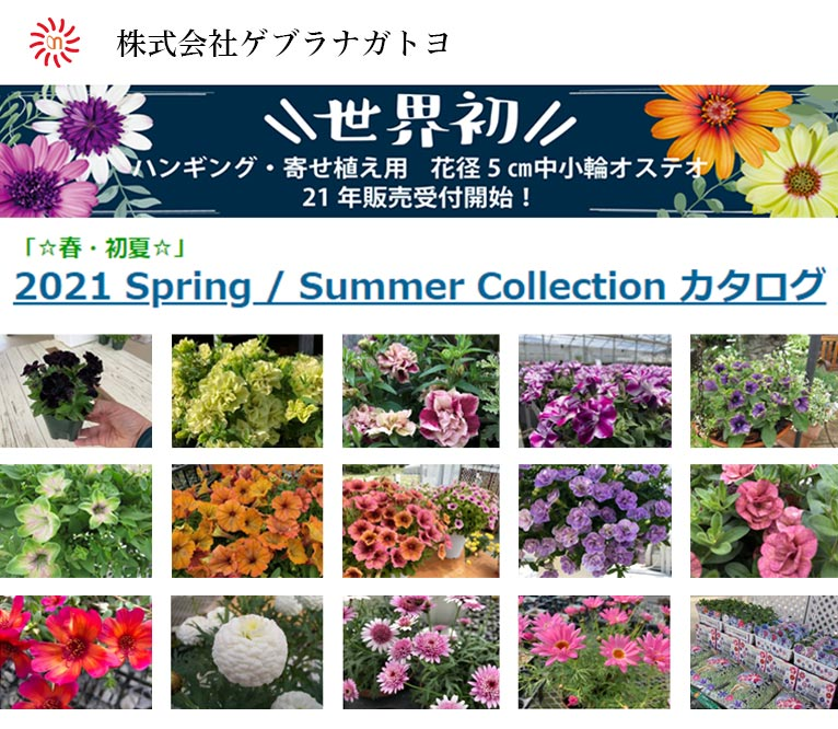 2021 spring/summer Collectionカタログが出来ました! 株式会社ゲブラナガトヨ