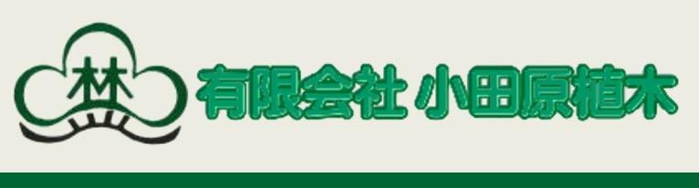 赤ひげ 小田原植木