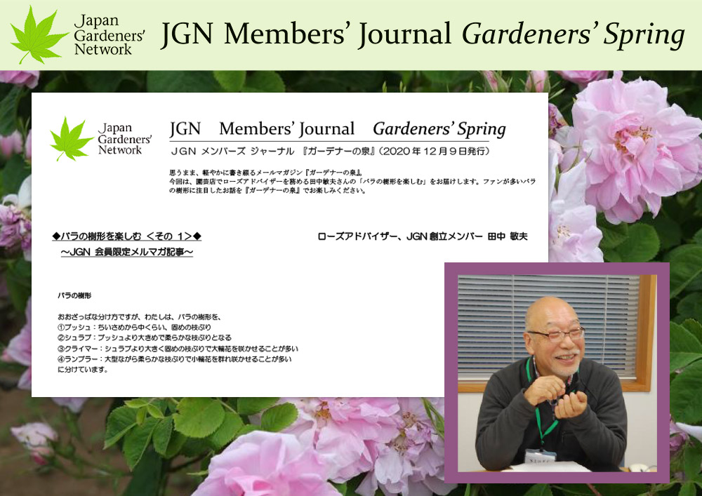 JGNメンバーズジャーナル【ガーデナーの泉】 2020年12月9日配信 バラの樹形を楽しむ<その1> ローズアドバイザー、JGN創立メンバー 田中敏夫氏