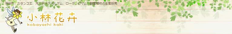 Gadenet 小林花卉